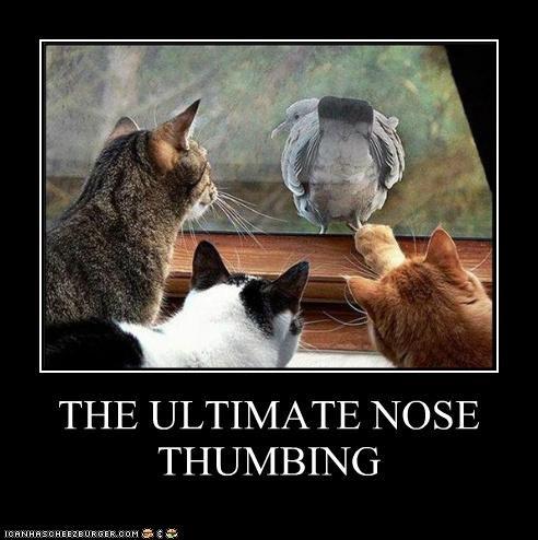 thumbnose